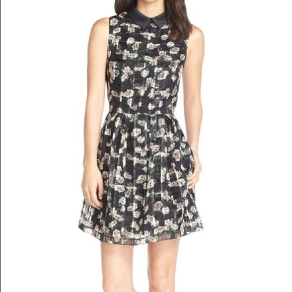 ERIN by Erin Fetherston Dresses & Skirts - Erin Fetherston Cara organza fit & flare dress 4